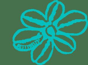 logo flower teal blue
