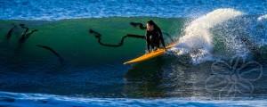 Annalie Surfing